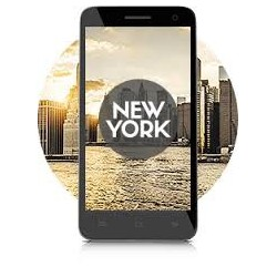 Laiq New York